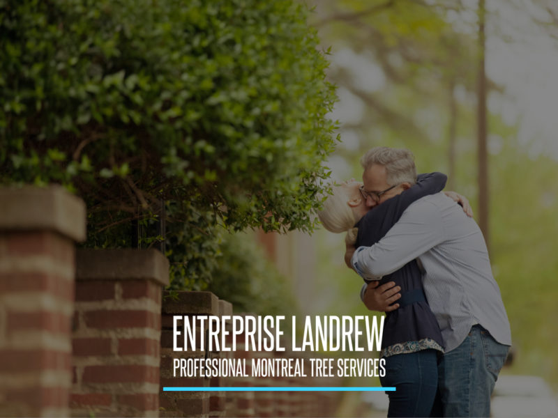 Entreprise Landrew Tree Services